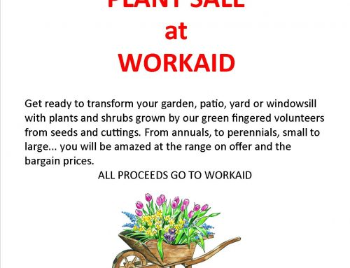 Hundreds of Plants! Saturday, 11th May at Workaid